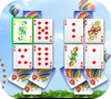 Game Sunny park solitaire