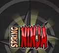 Игра Спринг Ниндзя