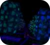 Игра Призрак Хакер 2