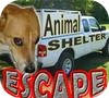 Игра Побег от собачников