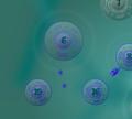 Игра Войны бактерий