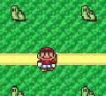 Игра Супер Марио собирает монеты