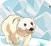 Игра Амиго Панчо 5: Арктика и Перу