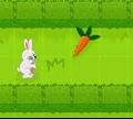 Игра Короткий маршрут для кролика