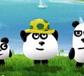 Игра Три панды в Бразилии