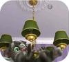 Кадр из игры Говорящий Том 2