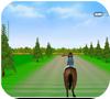 Кадр из игры Прыжки на лошади 2